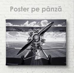 Poster, Avionul din trecut