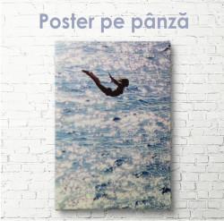 Poster, Fată sare în apă