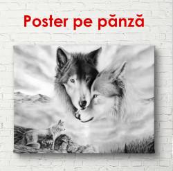 Poster, Lupi