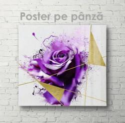 Poster, Trandafir purpuriu