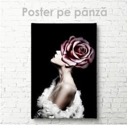 Poster, Trandafir Roz Glamour