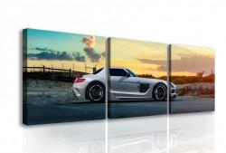 Tablou modular, Mercedes alb