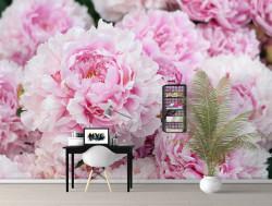 Fototapet, Bujori roz strălucitori