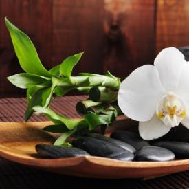 Fototapet, Orhidee albă și pietre negre
