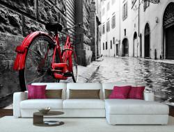 Fototapet, Peisajul alb-negru cu o bicicletă roșie