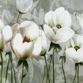 Fototapet, Un câmp cu flori albe