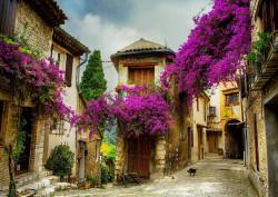 Fototapet, Un oraș cu flori violet