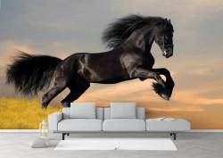Fototapete cu un cal negru ce galopeaza prin nisip
