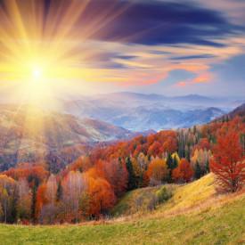 Fototapete O padure de toamnă și amurgul pe fundalul munților
