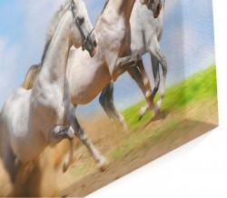 Multicanvas, Cai în mișcare