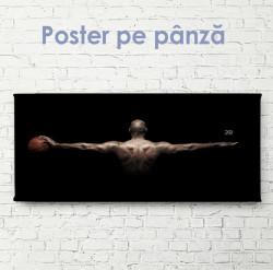 Poster, Aripile jucătorului de baschet
