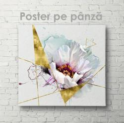 Poster, Floare albă plină de farmec