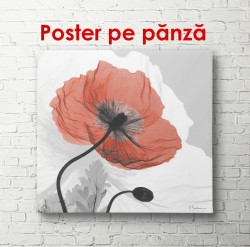 Poster, Macul roșu pe un fundal gri