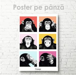 Poster, Maimuțe drăguțe