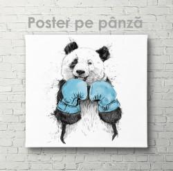 Poster, Panda sportiv
