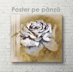 Poster, Trandafir alb pe fundal auriu