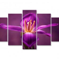 Tablou modular, Irisul de culoare bordo