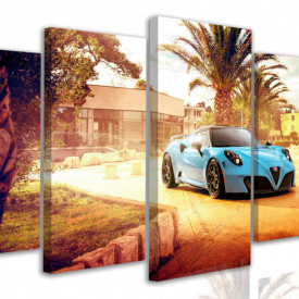 Tablou modular, Mașini albastre în curte