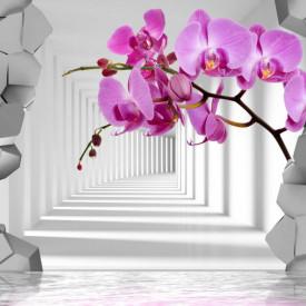 Fototapet 3D, Fantezie cu orhidee violet