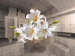 Fototapet 3D, Un crin alb pe fundalul unui tunel din lemn
