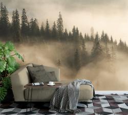 Fototapet, Brazii în ceață