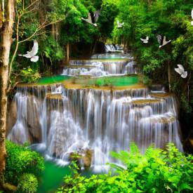 Fototapet, Cascada în pădurea verde