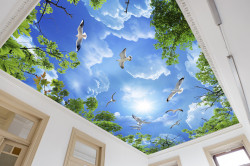 Fototapet, Cerul albastru și păsări albe