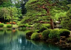 Fototapet, Frumusețea naturii
