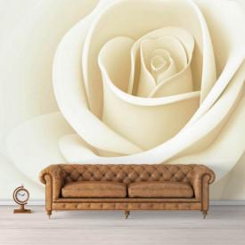 Fototapet, Un trandafir alb