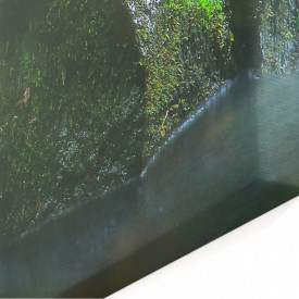 Multicanvas, Cascada în pădure.