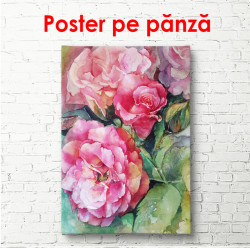 Poster, Bujori roz pe un fundal verde
