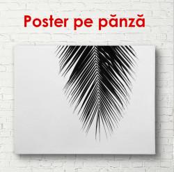 Poster, Frunze de palmier pe un fond gri