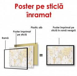 Poster, Harta lumii pe un fundal din lemn