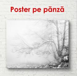 Poster, Peisajul alb-negru lângă un lac