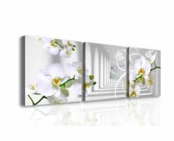 Tablou modular, Orhidee în tunel.