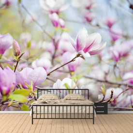 Fototapet, Flori de primăvară