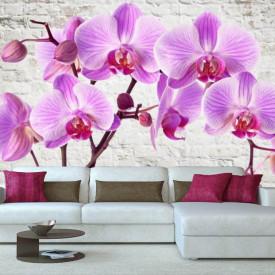 Fototapet, Orhidee roz pe un fundal de cărămizi de culoare albă