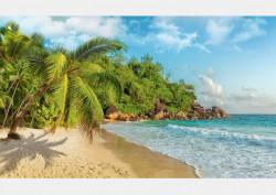 Fototapet, Plajă și palmieri