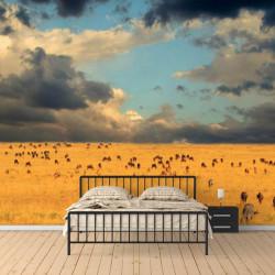 Fototapet, Savana și cerul acoperit de nori