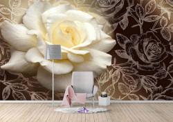 Fototapet, Un trandafir alb pe un fundal negru