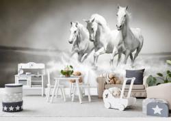 Fototapete, Cai în galop alb-negru