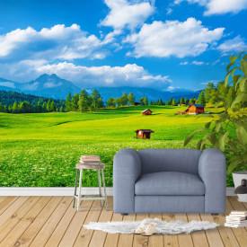 Fototapete, Peisaj cu iarbă verde și cer albastru