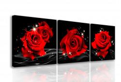 Multicanvas, Trei trandafiri roșii pe un fond negru