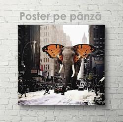 Poster, Elefantul din poveste