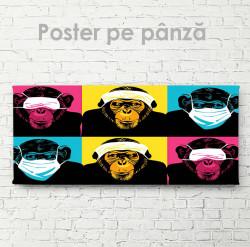 Poster, Maimuțele drăguțe
