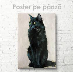 Poster, Pisica neagra