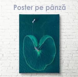 Poster, Plasa de pescuit și barca în largul mării