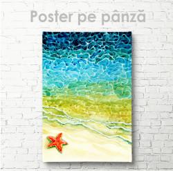 Poster, Stea de mare