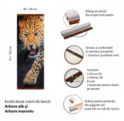 Roll-up, Leopardul furios