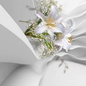 Fototapet 3D, Crini albi pe un fundalul de mătase albă